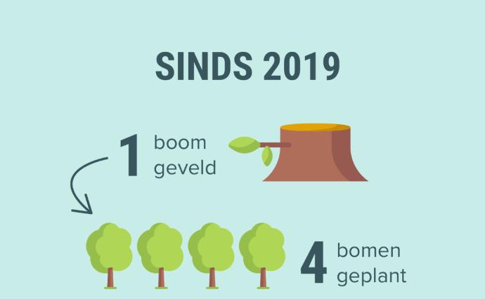 Sinds 2019: 1 boom geveld = 4 bomen geplant